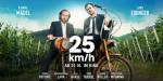 25 km/h (c)