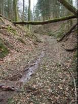 Weg zum Steinbruch